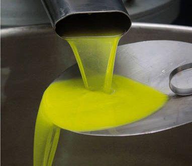 Falso olio extravergine, 17 indagati in centro Italia