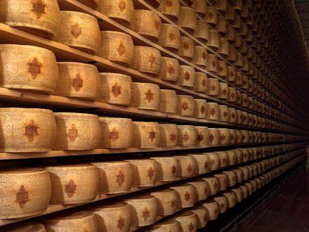 Grana Padano, da falso formaggio un mld danni
