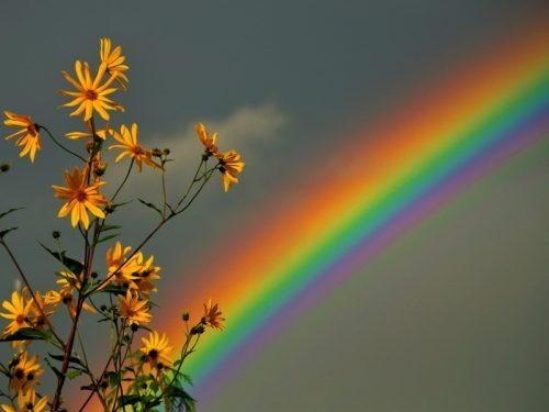 Aspettando l'arcobaleno…